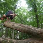 cour yoga entreprise la roche-sur-yon cours tous niveau
