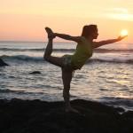 maison des medecines douces la roche sur yon yoga hatha vinyasa vendée 85