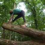 yoga entreprise la roche sur yon yoga debutant centre ville