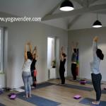 cours de yoga vendee la roche sur yon yoga hatha yoga vinyassa yoga iyengar yoga enfant yoga enfant parent acroyoga