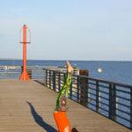 cour yoga la tranche sur mer maud chevallier yoga vendee