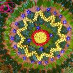 atelier mandala créatif land art yoga vendee