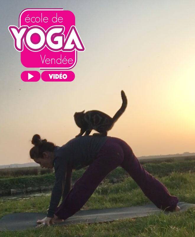 Vidéo cours Yoga Vendée La Roche sur Yon