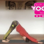 video gratuit cours de yoga la roche sur yon vendee